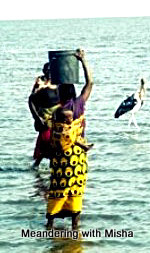 Bringing in the catch on Lake Victoria