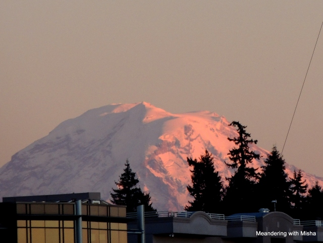 Mount Rainier catches the final rays.